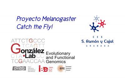 Primera red europea de ciencia ciudadana en genómica de la adaptación